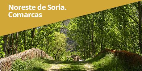 noreste-soria-comarcas