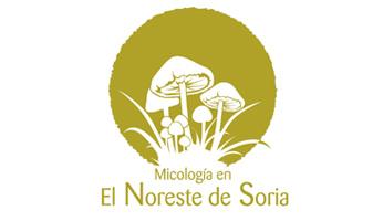 senderos-micologicos-proynerso